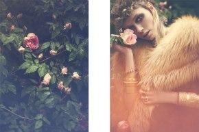 Stefan Giftthaler Photography