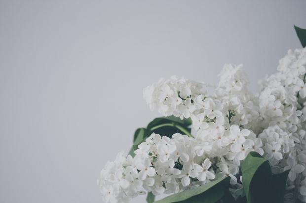 Dreaming poem by Desmond. Poems Unrequited blog.